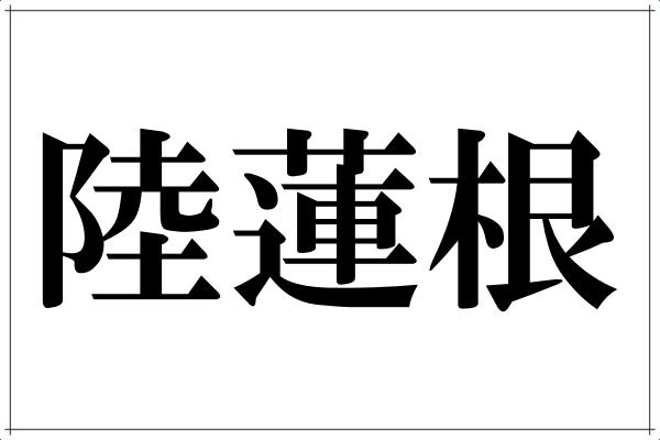 「陸蓮根」この漢字なんて読むの?色合い鮮やかなアノ野菜です。